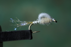 8 Olive Straight Loopwing Emerger
