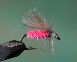 G2 GRAYLING CDC